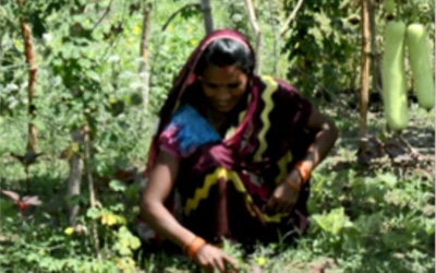 Woman Farmer demonstrates Woman Power